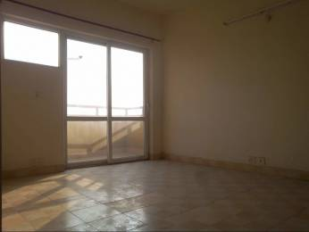1305 sqft, 2 bhk Apartment in BPTP Princess Park Sector 86, Faridabad at Rs. 11500