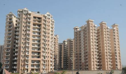 1304 sqft, 2 bhk Apartment in SRS SRS Residency Sector 88, Faridabad at Rs. 9500