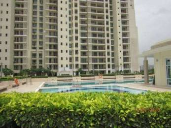 3064 sqft, 4 bhk Apartment in DLF The Summit Sector 54, Gurgaon at Rs. 70000