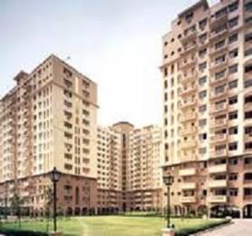 1443 sqft, 3 bhk Apartment in DLF Ridgewood Estate Sector 27, Gurgaon at Rs. 40000