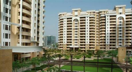 3925 sqft, 5 bhk Apartment in Vipul Belmonte Sector 53, Gurgaon at Rs. 1.0500 Lacs