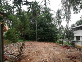 4349 sqft, Plot in Builder Project Attore, Thrissur at Rs. 8.0000 Lacs