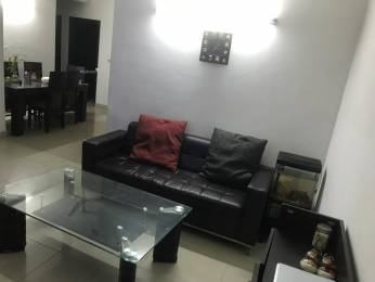 1075 sqft, 2 bhk Apartment in Supertech 34 Pavilion Sector 34, Noida at Rs. 65.0000 Lacs