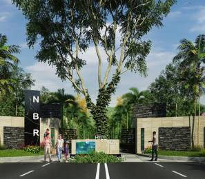 1200 sqft, Plot in NBR Hills View Chikballapur, Bangalore at Rs. 25.2000 Lacs