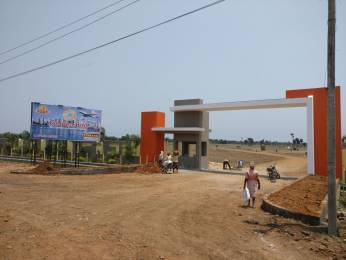 1503 sqft, Plot in Builder GOLDEN BIRD Bhogapuram, Visakhapatnam at Rs. 16.7000 Lacs