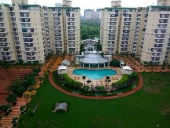 1750 sqft, 3 bhk Apartment in Supertech Emerald Court Sector 93A, Noida at Rs. 18500