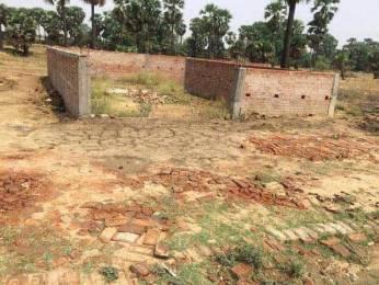 1256 sqft, Plot in Builder Project Parao Ramnagar Road, Varanasi at Rs. 13.2000 Lacs