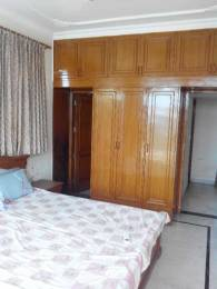 1335 sqft, 2 bhk Apartment in Builder Project Sector 70, Mohali at Rs. 22000