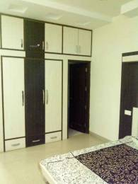 1000 sqft, 1 bhk BuilderFloor in Builder Project Phase 10, Mohali at Rs. 14000