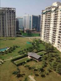 1495 sqft, 2 bhk Apartment in Central Park Central Park Belgravia Resort Residences 2 Sector 48, Gurgaon at Rs. 1.7000 Cr