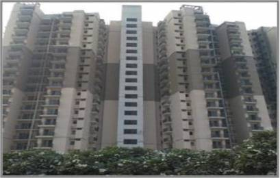 1654 sqft, 3 bhk Apartment in Logix Blossom County Sector 137, Noida at Rs. 78.5000 Lacs