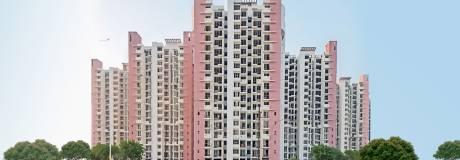 1040 sqft, 2 bhk Apartment in Logix Blossom Greens Sector 143, Noida at Rs. 39.0000 Lacs
