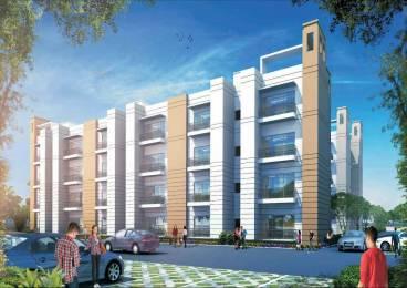 800 sqft, 2 bhk BuilderFloor in Builder Savitry Greens 2 Zirakpur punjab, Chandigarh at Rs. 20.0000 Lacs