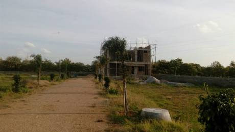 1620 sqft, Plot in Builder DIVYASRI LUCKY HOMES HMDA Layout Bongloor, Hyderabad at Rs. 26.4222 Lacs
