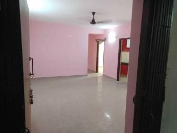 1200 sqft, 3 bhk Apartment in Aster Gardens New Town, Kolkata at Rs. 12000