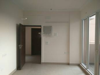 1705 sqft, 3 bhk Apartment in Exotica Dreamville Sector 16C Noida Extension, Greater Noida at Rs. 13000