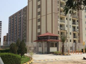 650 sqft, 1 bhk Apartment in Trehan Royal Court Shahjahanpur, Neemrana at Rs. 13.2500 Lacs