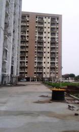 965 sqft, 2 bhk Apartment in Trehan Royal Court Shahjahanpur, Neemrana at Rs. 21.0000 Lacs