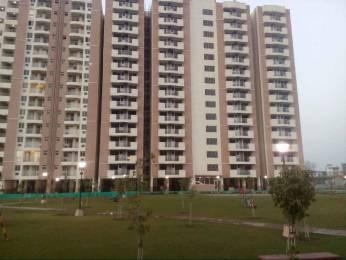 1389 sqft, 3 bhk Apartment in Builder Status Residency Tapukara Bhiwadi bhiwadi alwar bypass road, Alwar at Rs. 26.0000 Lacs