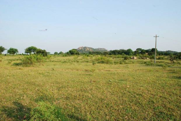 2907 sqft, Plot in Aliens Hub Kadthal, Hyderabad at Rs. 10.0000 Lacs