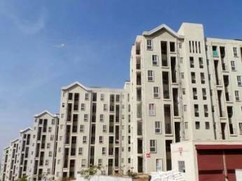 650 sqft, 1 bhk Apartment in NSG The Royal Mirage Wakad, Pune at Rs. 43.0000 Lacs