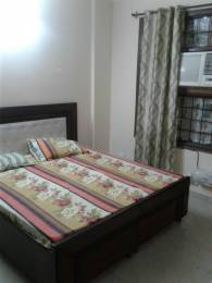 1400 sqft, 3 bhk Apartment in Builder Project Sector 63, Chandigarh at Rs. 30000