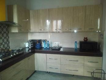 1200 sqft, 2 bhk Apartment in Builder Project Sector 51, Chandigarh at Rs. 23000