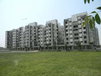 1130 sqft, 2 bhk Apartment in Om Shivam Shiv Elite New Khapri, Nagpur at Rs. 36.7250 Lacs