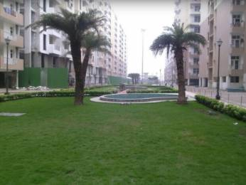1350 sqft, 3 bhk Apartment in Super OXY Homez Indraprastha Yojna, Ghaziabad at Rs. 35.0000 Lacs