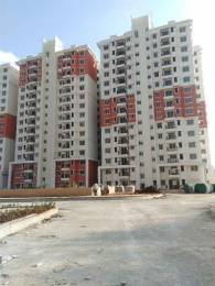 1197 sqft, 2 bhk Apartment in Builder Prestige Ferns Residency Harlur road Bangalore Harlur, Bangalore at Rs. 79.8500 Lacs