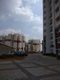 1128 sqft, 2 bhk Apartment in Prestige Norwood at Sunrise Park Electronic City Phase 1, Bangalore at Rs. 73.0000 Lacs
