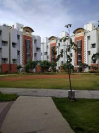 3252 sqft, 4 bhk Apartment in Habitat Crest ITPL, Bangalore at Rs. 45000