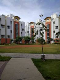 2901 sqft, 3 bhk Apartment in Habitat Crest ITPL, Bangalore at Rs. 2.5000 Cr