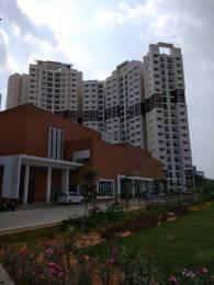 1200 sqft, 2 bhk Apartment in Prestige IVY Terraces Bellandur, Bangalore at Rs. 88.0000 Lacs