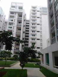 3550 sqft, 3 bhk Apartment in Nitesh Canary Wharf Richmond Town, Bangalore at Rs. 1.5500 Lacs