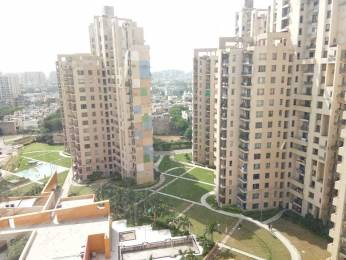 1418 sqft, 2 bhk Apartment in Unitech Fresco Sector 50, Gurgaon at Rs. 30000