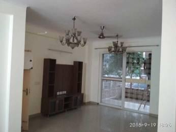 1158 sqft, 3 bhk Apartment in Unitech Woodstock Floors Sector 50, Gurgaon at Rs. 29000