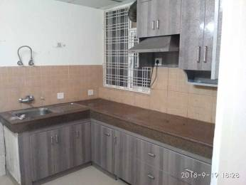 1950 sqft, 3 bhk Apartment in Pioneer Pioneer Park PH 1 Sector 61, Gurgaon at Rs. 50000