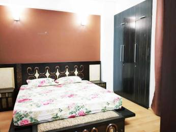 1603 sqft, 3 bhk Apartment in Vatika City Sector 49, Gurgaon at Rs. 41000