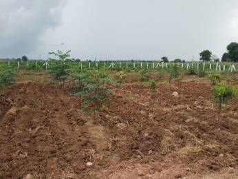 8100 sqft, Plot in Builder Project Srisailam Highway, Hyderabad at Rs. 8.9910 Lacs