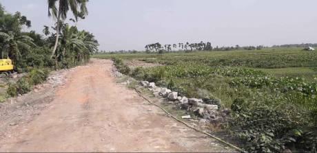 1440 sqft, Plot in Janapriyo Kalyani City Enclave Shyamnagar, Kolkata at Rs. 8.5000 Lacs