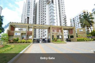 1922 sqft, 3 bhk Apartment in Salarpuria Sattva Sattva Senorita Sarjapur  Road, Bangalore at Rs. 1.3400 Cr