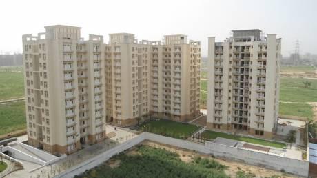 1437 sqft, 3 bhk Apartment in Tulip Orange Sector 70, Gurgaon at Rs. 85.0000 Lacs