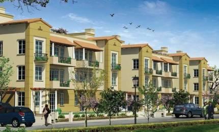 1380 sqft, 3 bhk BuilderFloor in Emaar Emerald Floors Sector 65, Gurgaon at Rs. 1.2500 Cr