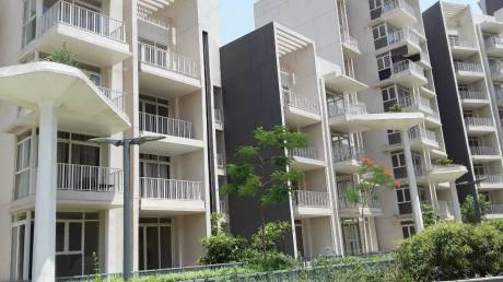 2847 sqft, 4 bhk Apartment in Ireo Victory Valley Sector 67, Gurgaon at Rs. 2.6100 Cr