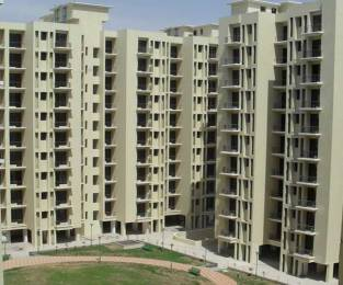 1234 sqft, 2 bhk Apartment in Cosmos Greens Sector 18 Bhiwadi, Bhiwadi at Rs. 25.0000 Lacs