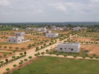 2250 sqft, Plot in Builder Project Mucherla, Hyderabad at Rs. 6.2000 Lacs