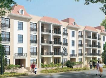 1550 sqft, 3 bhk BuilderFloor in Omaxe Royal Residency Dad Village, Ludhiana at Rs. 15000