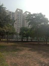 210 sqft, 1 bhk Apartment in Bestech Park View City 2 Sector 49, Gurgaon at Rs. 12000