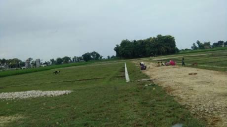 1000 sqft, Plot in Builder Arise velvet Rohniya Road, Varanasi at Rs. 12.0100 Lacs